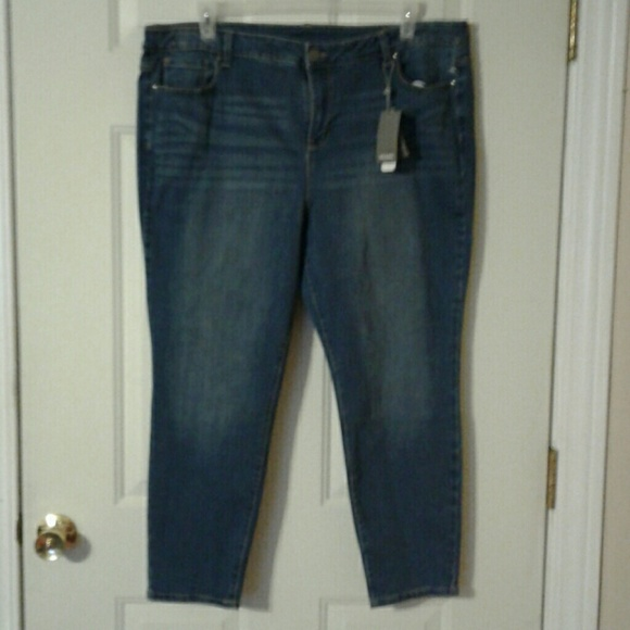 fd2ed97f13e Sears Clasic Plus Size Skinny Jeans